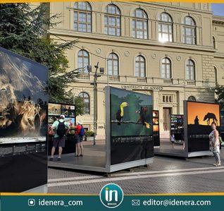 Pameran Foto Lintas Jalan di Dugonics Tér, Szeged